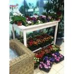 Стол-подставка для горшечных растений